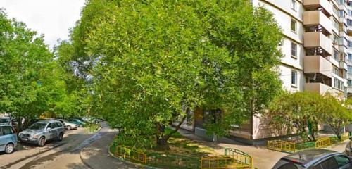 Панорама питомник животных — Питомник кошек Мейн Кун Licacoon — Москва, фото №1